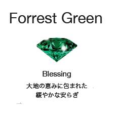 [Forest Green]Blessing:大地の恵みに包まれた緩やかな安らぎ